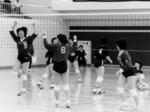 volley7.jpg