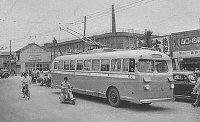 Trolley_bus.JPG