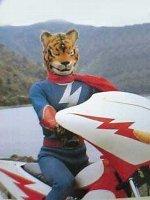 tiger_seven.jpg