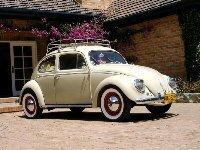 vw_beetle.jpg